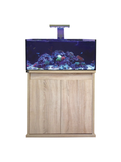 D-D Reef-Pro 900-Platinum Oak
