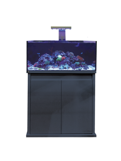 D-D Reef-Pro 900-Anthracite